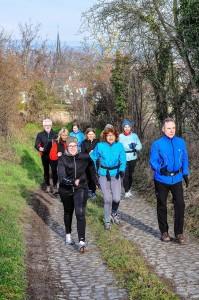 Walkinggruppe Weinheimer, 03-2014